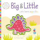Big & Little (Touch, Feel, Explore!) Cover Image