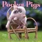 Pocket Pigs Wall Calendar 2017: The Famous Teacup Pigs of Pennywell Farm Cover Image