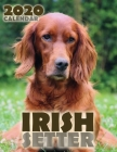 Irish Setter 2020 Calendar Cover Image