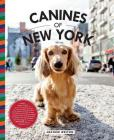 Canines of New York Cover Image