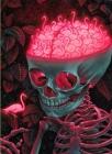 The Birdbrain: A Jigsaw Puzzle by Casey Weldon Cover Image