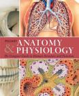 Pocket Anatomy & Physiology: The Compact Guide to the Human Body and How It Works Cover Image