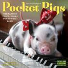 Pocket Pigs Mini Wall Calendar 2017: The Famous Teacup Pigs of Pennywell Farm Cover Image