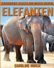 Elefanten: Ein Kinderbuch mit erstaunlichen Fotos und interessanten Fakten über Elefanten Cover Image