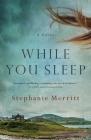 While You Sleep: A Novel Cover Image