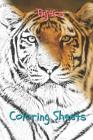 Tigers Coloring Sheets: 30 Tigers Drawings, Coloring Sheets Adults Relaxation, Coloring Book for Kids, for Girls, Volume 1 Cover Image