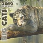 Big Cats 2019 Mini Wall Calendar Cover Image