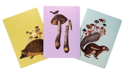 Art of Nature: Fungi Sewn Notebook Collection (Set of 3): (Gifts for Mushroom Enthusiasts and Nature Lovers, Nature Journal, Journals for Hikers) (Fantastic Fungi) Cover Image
