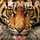 Animals: Witness Life in the Wild Featuring 100s of Species Cover Image