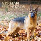German Shepherds 2021 Square Foil Cover Image