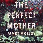 The Perfect Mother Cover Image