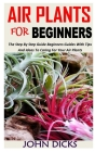 Air Plants for Beginners: The Step By Step Guide Beginners Guides With Tips And Ideas To Caring For Your Air Plants Cover Image