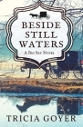 Beside Still Waters: A Big Sky Novel Cover Image