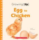 Egg to Chicken (Growing Up) (Paperback) (Explore the Life Cycle!) Cover Image