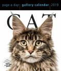 Cat Page-A-Day Gallery Calendar 2019 Cover Image