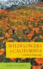 Wildflowers of California: A Month-by-Month Guide Cover Image