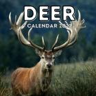 Deer Calendar 2021: 16-Month Calendar, Cute Gift Idea For Deer Lovers Women & Men Cover Image