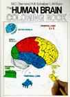 The Human Brain Coloring Book (Coloring Concepts) Cover Image