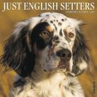 Just English Setters 2019 Wall Calendar (Dog Breed Calendar) Cover Image