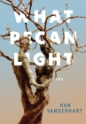 What Pecan Light Cover Image