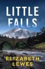 Little Falls: A Novel Cover Image