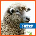 Sheep (Animals on the Farm) Cover Image