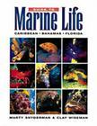 Guide to Marine Life: Caribbean-Bahamas-Florida Cover Image