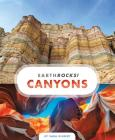 Canyons (Earth Rocks!) Cover Image