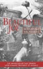 Beautiful Joe (Paperback) Cover Image