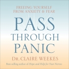 Pass Through Panic Lib/E: Freeing Yourself from Anxiety and Fear Cover Image