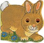 Pocket Bunny (Pocket Pals) Cover Image
