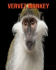 Vervet Monkey: Learn About Vervet Monkey and Enjoy Colorful Pictures Cover Image