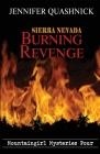 Sierra Nevada Burning Revenge Cover Image