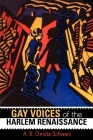 Gay Voices of the Harlem Renaissance (Blacks in the Diaspora) Cover Image