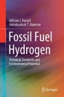 Fossil Fuel Hydrogen: Technical, Economic and Environmental Potential Cover Image