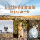 Little Animals in the Arctic: English Edition Cover Image