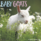 Baby Goats 2020 Wall Calendar Cover Image