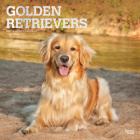 Golden Retrievers 2021 Square Foil Cover Image