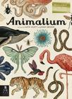Animalium: Welcome to the Museum Cover Image