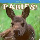 Moose Babies! (Babies! (Farcountry Press)) Cover Image