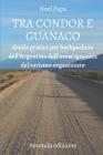 Tra Condor E Guanaco: Guida Pratica per Backpackers dell'Argentina dell'Ovest ignorata dal Turismo Organizzato - Seconda Edizione Cover Image