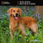 Cal 2020-National Geographic Golden Retrievers Wall Cover Image