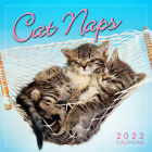 Cat Naps 2022 Mini Calendar Cover Image
