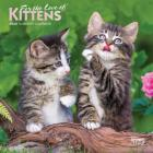 Kittens, for the Love of 2020 Mini 7x7 Foil Cover Image