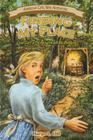 Finding My Place: One Girl's Strength at Vicksburg (American Civil War Adventure) Cover Image