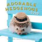 Adorable Hedgehogs 2020: 16-Month Calendar - September 2019 through December 2020 Cover Image