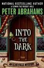 Into the Dark (Echo Falls Mystery #3) Cover Image