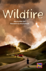 Wildfire!: Leveled Reader Ruby Level 28 Cover Image