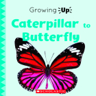 Caterpillar to Butterfly (Growing Up) (Paperback) (Explore the Life Cycle!) Cover Image