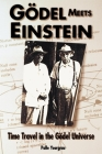 Godel Meets Einstein: Time Travel in the Godel Universe Cover Image